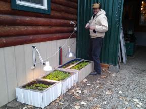 lettuce warmers 4x
