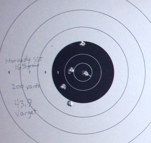 targets of Hornady SST