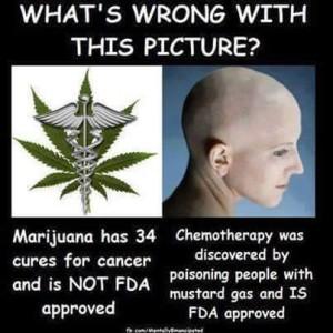 mj vs chemo